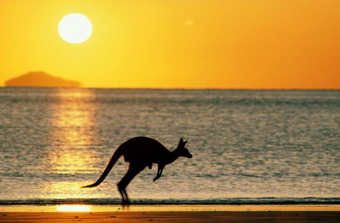 悉尼、蓝山、黄金海岸、布里斯班七天游