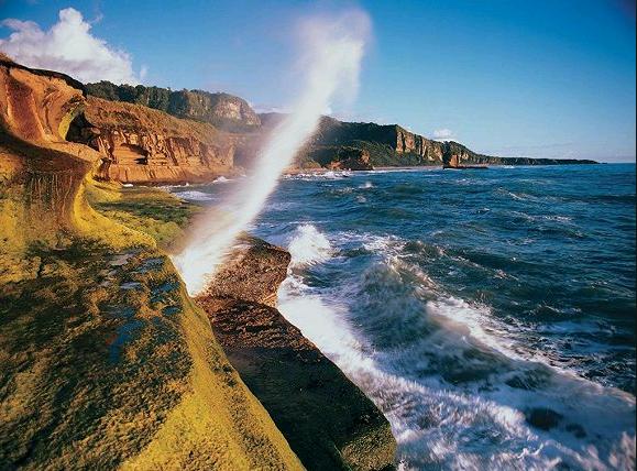 汤加塔布岛休闲游